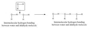 Hydrogen Bond 6