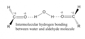 Hydrogen Bond Definition, Examples And Types | Chemistry
