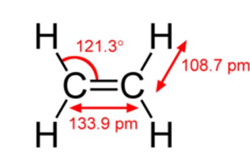 Double Covalent Bond 2