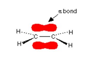 Double Covalent Bond 6