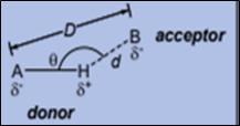 Hydrogen Bonding in Hydrogen Flouride (HF) 1