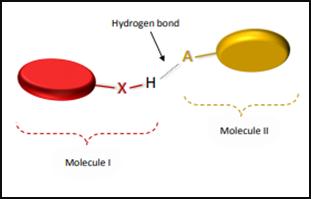 Hydrogen Bonding in Hydrogen Flouride (HF) 2