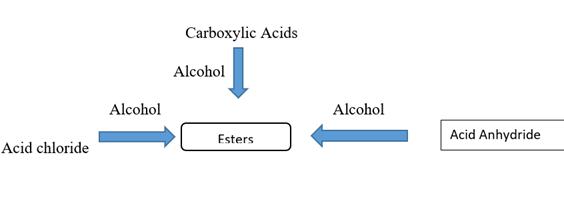 Ester hydrolysis 2