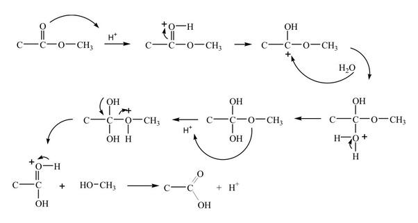 Ester hydrolysis 5